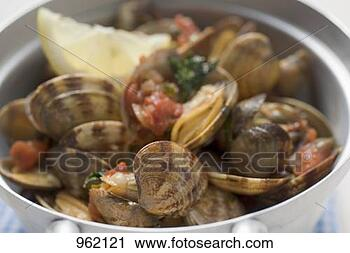 Stock Photography - clams with tomatoes.  fotosearch - search  stock photos,  pictures, images,  and photo clipart