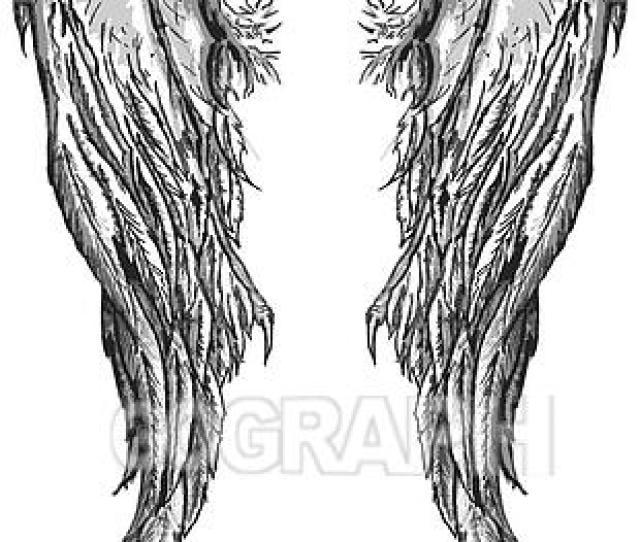 Evil Angel Wings