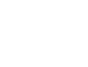 USA flag logo big