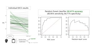 Random Forest Classification to Predict Response to High-Definition Transcranial Direct Current Stimulation Therapy for Tinnitus