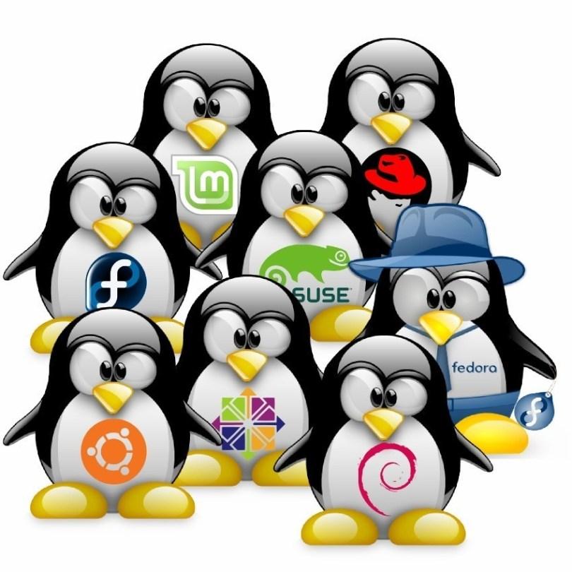 linux-distros-penguins-mascot