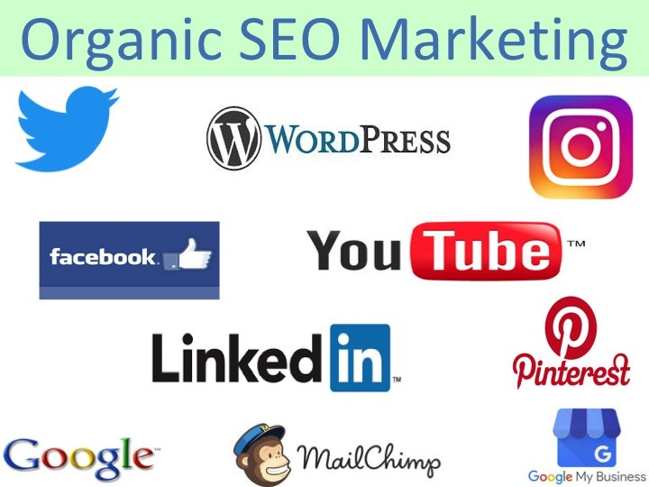 WordPress social media organic SEO training
