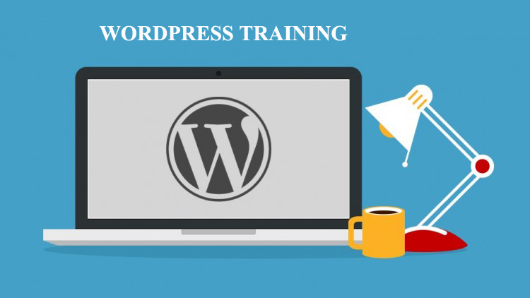 wordpress training for small business owners