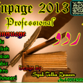 Inpage Urdu 2013 Silent Version by CMTEAMPK