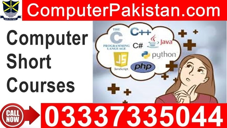 computer short courses in urdu