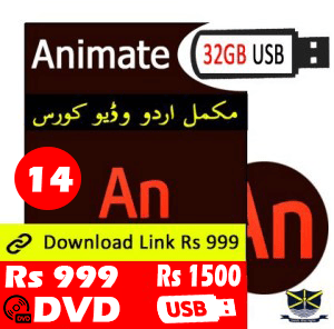 Flash Professional Video Tutorial in Urdu - Animated Software