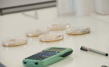 Plan sur calculatrice et échantillons de sol en culture, laboratoire mézagri, lioujas, 3clt