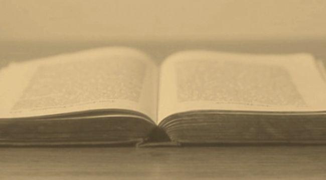 Curiosidad, conocimiento, cultura, palabras
