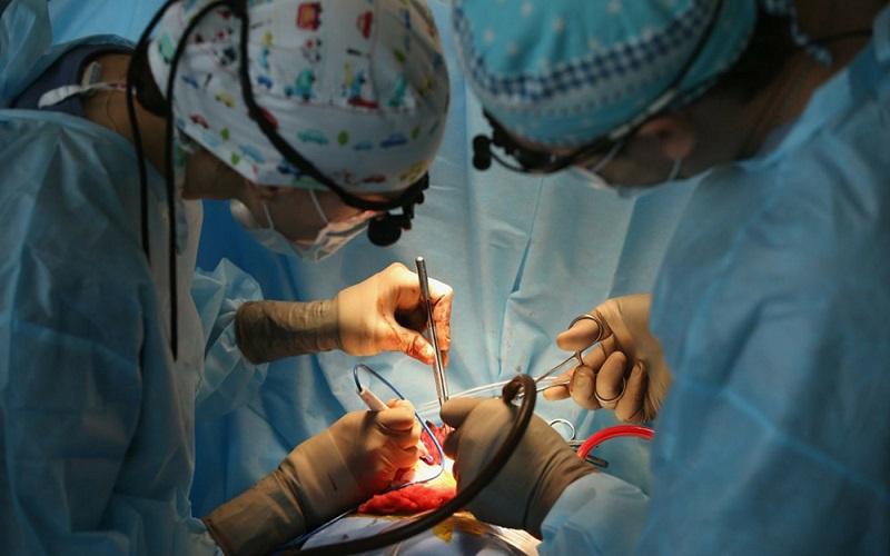suministro de sangre para la erección