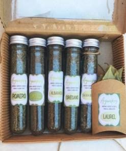 combo hierbas aromáticas en comunidad verde