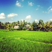 casa en Ubud