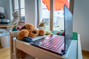 Con-TACT: working from home (WFH) with teddy bears