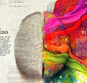 2 Hemisférios Cerebrais