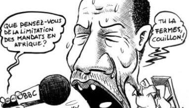 Limitation des mandats en Afrique - Le Grimpeur en colère
