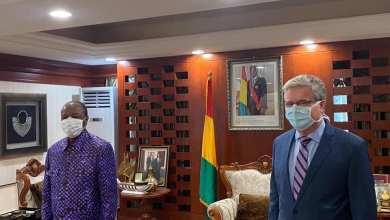 Sèkhoutouréyah, mardi 14 avril 2020 : Pr Alpha CONDÉ reçoit l'ambassadeur des États-Unis d'Amérique en Guinée