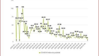 Vue générale de l'indice de positivité par échantillons prélevés et testés en Guinée