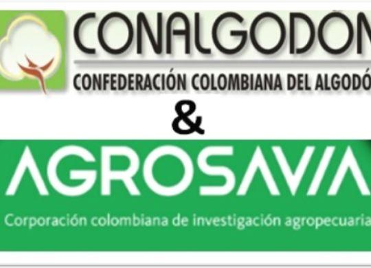 REUNION 04 MZ 2020 CCA Y AGROSAVIA