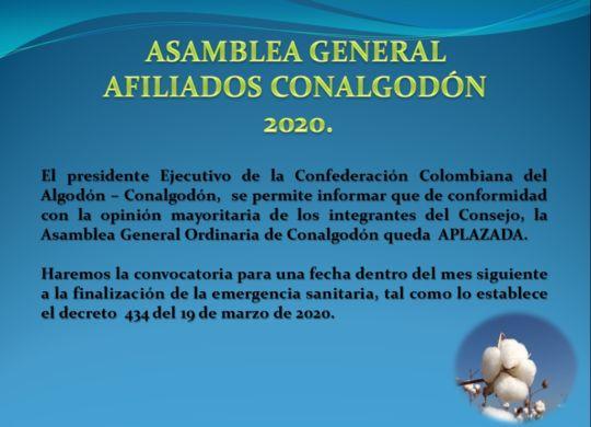 asamblea cca 2020 aplazada