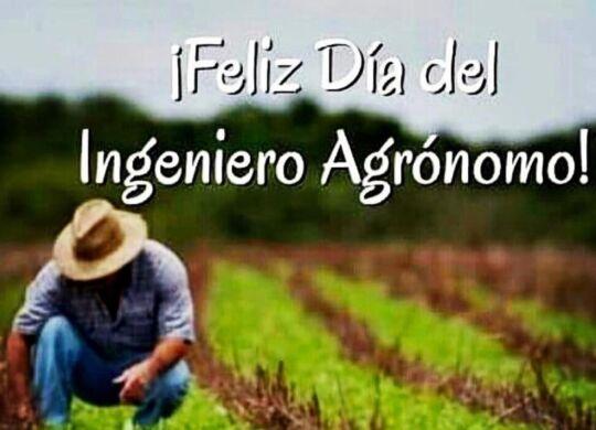 dia ingeniero agronomo1