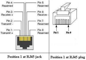 plug rj45 | concavoyconverso