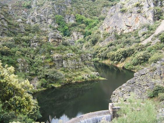 La falta de sensibilidad medio ambiental del Ayuntamiento de Bembibre provoca una catástrofe ecológica en el arroyo del Rial (1/3)