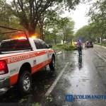 Colapsan 25 árboles por tormenta proteccion civil - 1° de marzo, Día Internacional de la Protección Civil - #Noticias