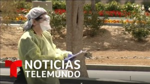1585991028 maxresdefault - Noticias Telemundo, 24 de marzo 2020 | Noticias Telemundo