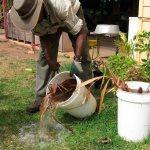 dengue24may - Se mantiene Colima fuera de los 10 primeros sitios a nivel nacional en casos de dengue