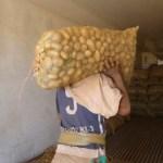 papas - FOTOS: Joven muestra qué ocurre si dejas olvidada una bolsa de papas en tu casa durante tres meses