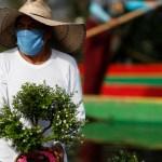 """covid meseta - Pese a ligero declive en infecciones por COVID-19, México podría llegar a una """"meseta"""" de la pandemia: Salud"""