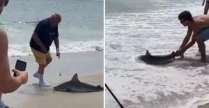 portada pesco tiburon error devolvio agua enmendar error - Pescó a un tiburón sin querer y lo devolvió al agua antes de que fuese tarde. Supo enmendar su error