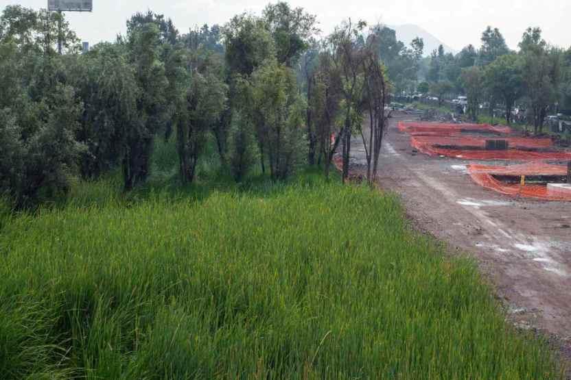 puente xochimilco obras - Presentan proyecto de restauración del Humedal de Xochimilco y creación del Museo del Axolote