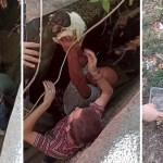 vecinos cachorro - Voluntarios rescatan a un cachorro atrapado y herido en un garaje de Rusia. Lloraba por auxilio