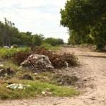 ejido morelos.jpg 242310155 - Vecinos del Morelos, Ahome, se quejan por basura en dren Mochicahui