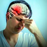 Asi responde nuestro cerebro ante situaciones extremas - Así responde nuestro cerebro ante situaciones estresantes