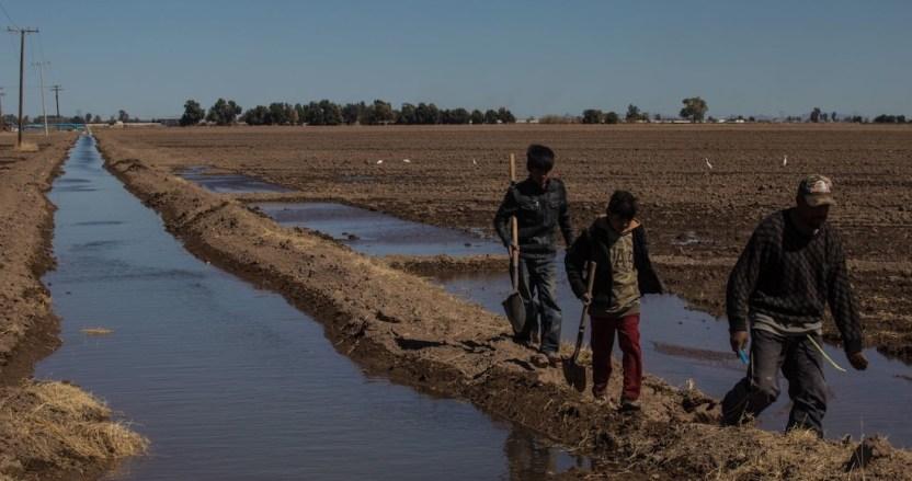 cultivo agua - Los dueños de México son además dueños del agua: Kimberly, Femsa, Azteca, Bachoco, Herdez, minas…