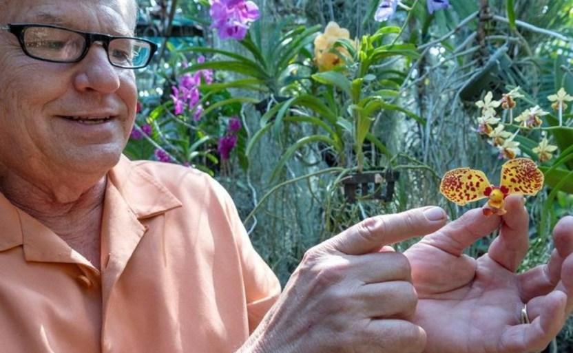 """78b0447763d0d1c23a06d75c0f52e5f78513ab68w 1 crop1612049962329.jpg 242310155 - """"Orquidiloco"""" descubre nuevas especies de orquídeas en Colombia"""