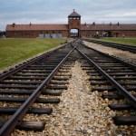 campo concentracion - La conmemoración del aniversario 76 de la liberación de Auschwitz se realiza en línea por la COVID-19