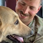 perro irak soldado rescate 1 - Soldado rescató a perro callejero en Irak y lo llevó consigo a Estados Unidos. Fue su compañero