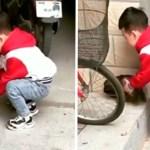 portada perro ayuda - Niño nota que su cachorro no podía subir escalones y decide ayudarlo. No hay dificultades para ellos