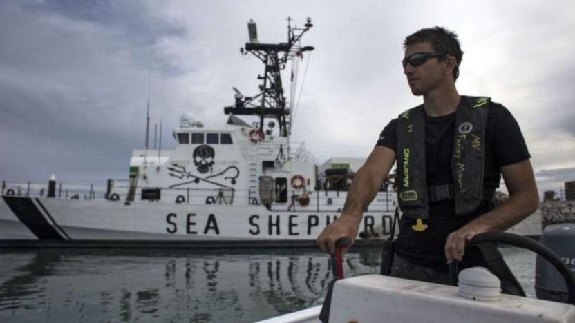 sea sheperd 116353517 gettyimages 943987442 - Muere un pescador mexicano tras un enfrentamiento con conservacionistas