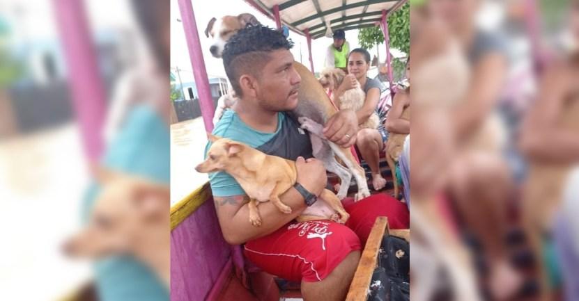 familia inundacion perros - Familia escapa de inundación en Brasil con sus perros en brazos. No iban a dejarlos abandonados