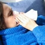 pexels polina tankilevitch 3873179 crop1612150862714.jpg 242310155 - El parvovirus se contagia a los humanos