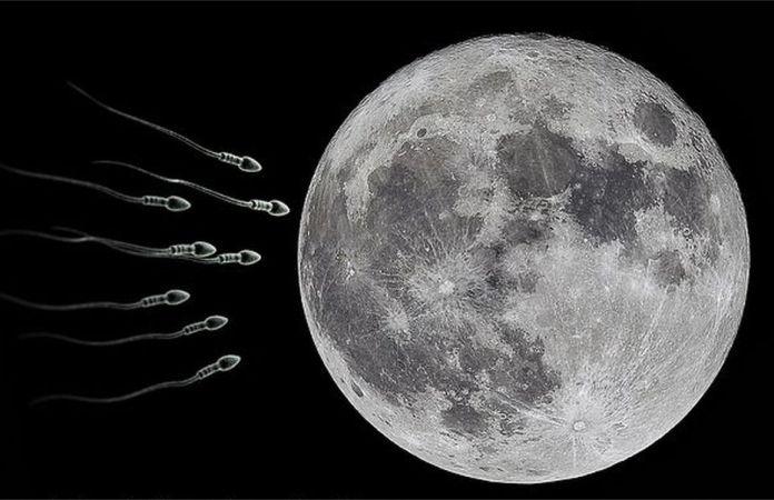 Por que los cientificos quieren enviar 67 millones de muestras de esperma a una boveda en la Luna - Científicos quieren enviar 6,7 millones de muestras de esperma a la Luna