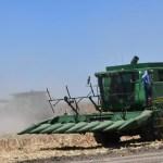 campo 1.jpg 242310155 - Nuevo gobernador deberá responder por la economía de Sinaloa