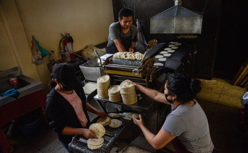 congreso cdmx pide a profeco verificar precio de la tortilla.jpg 242310155 - Pide Congreso de la CDMX a Profeco verificar el precio de la tortilla