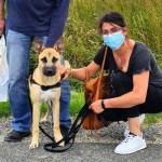 jaiden francia perro rescatado abandonado  - Perro que fue abandonado dos veces en un año volvió a ser adoptado. Encontró el hogar indicado