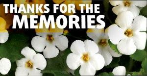Bacopa monnieri plant met tekst thanks for the memories