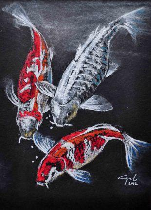 koi-fish-trio