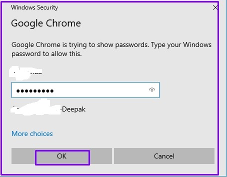 Windows Password and Click on Ok